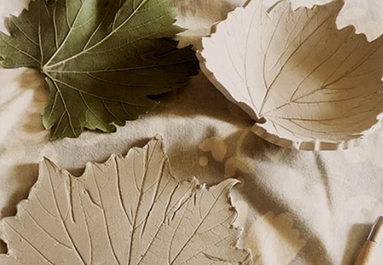 laboratorio artistico per le scuole botanica